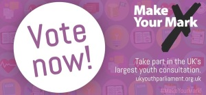 Make_Your_Mark-_Vote_Now